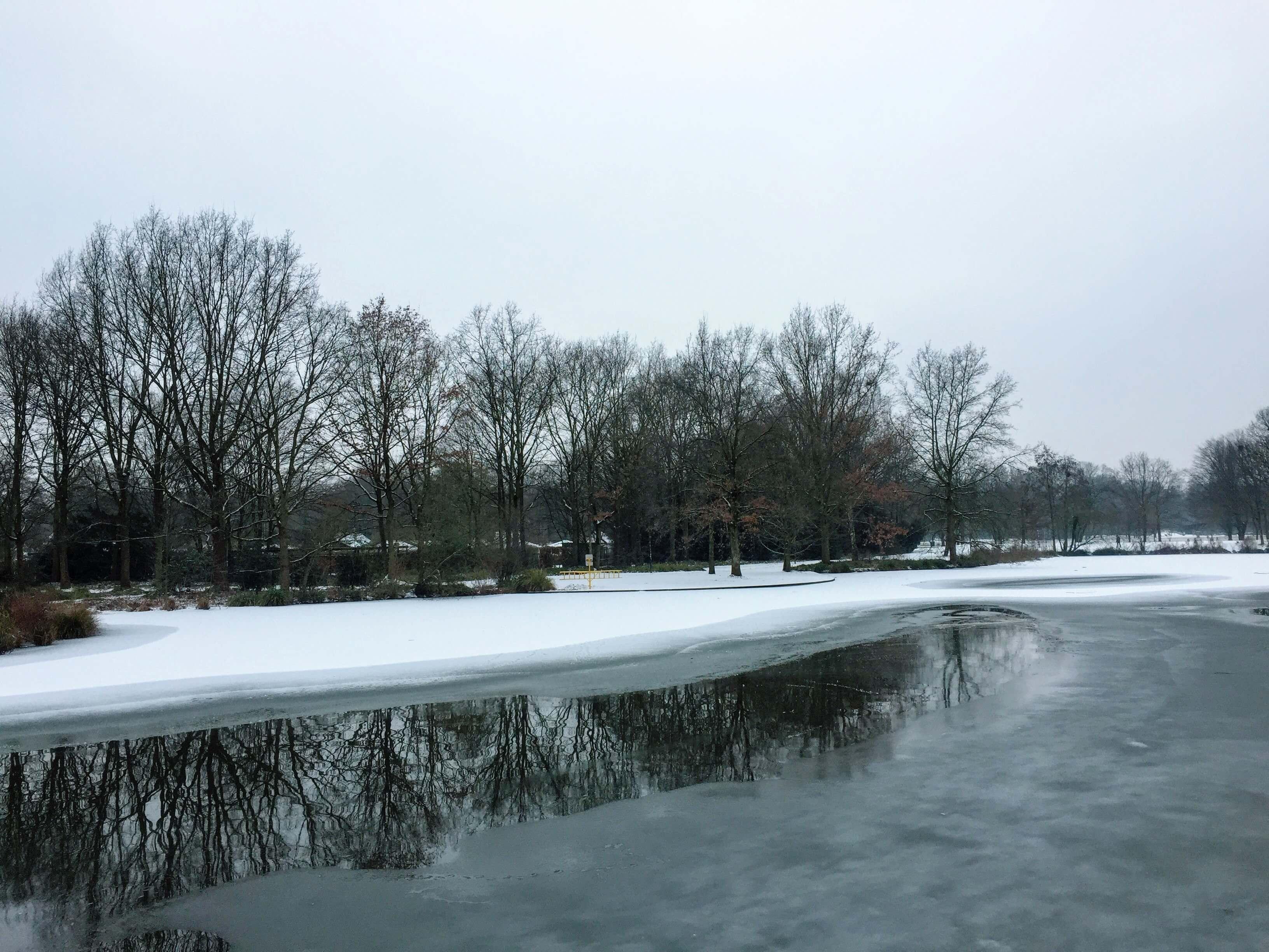 clima en enero en alemania