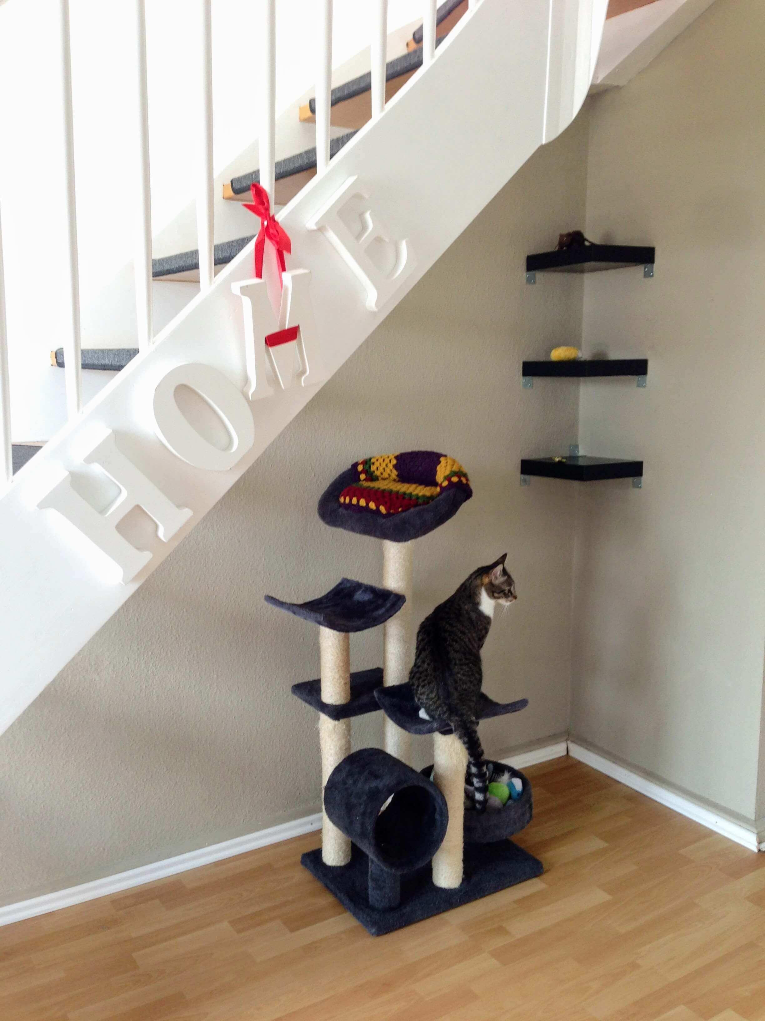 Cmo alquilar un piso excellent trmites alquilar piso with for Alquilar un piso