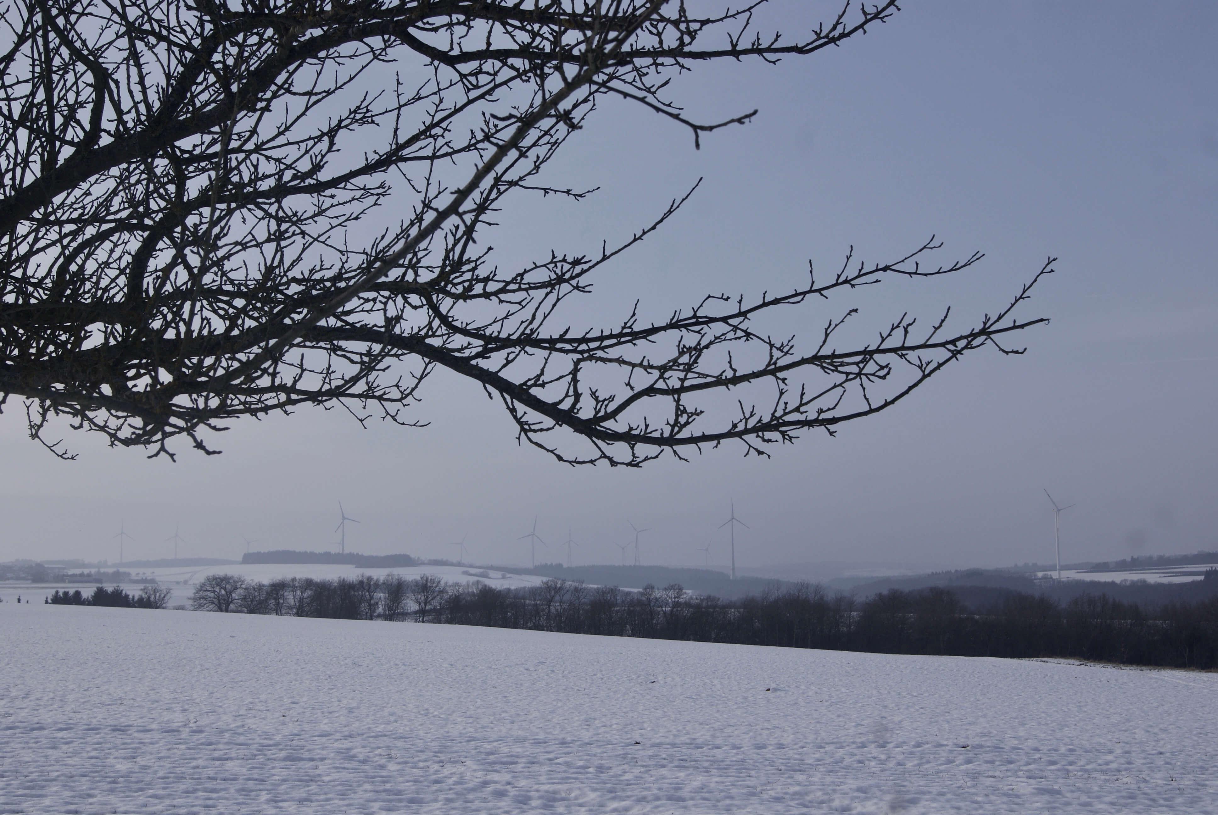 en febrero nieva en alemania