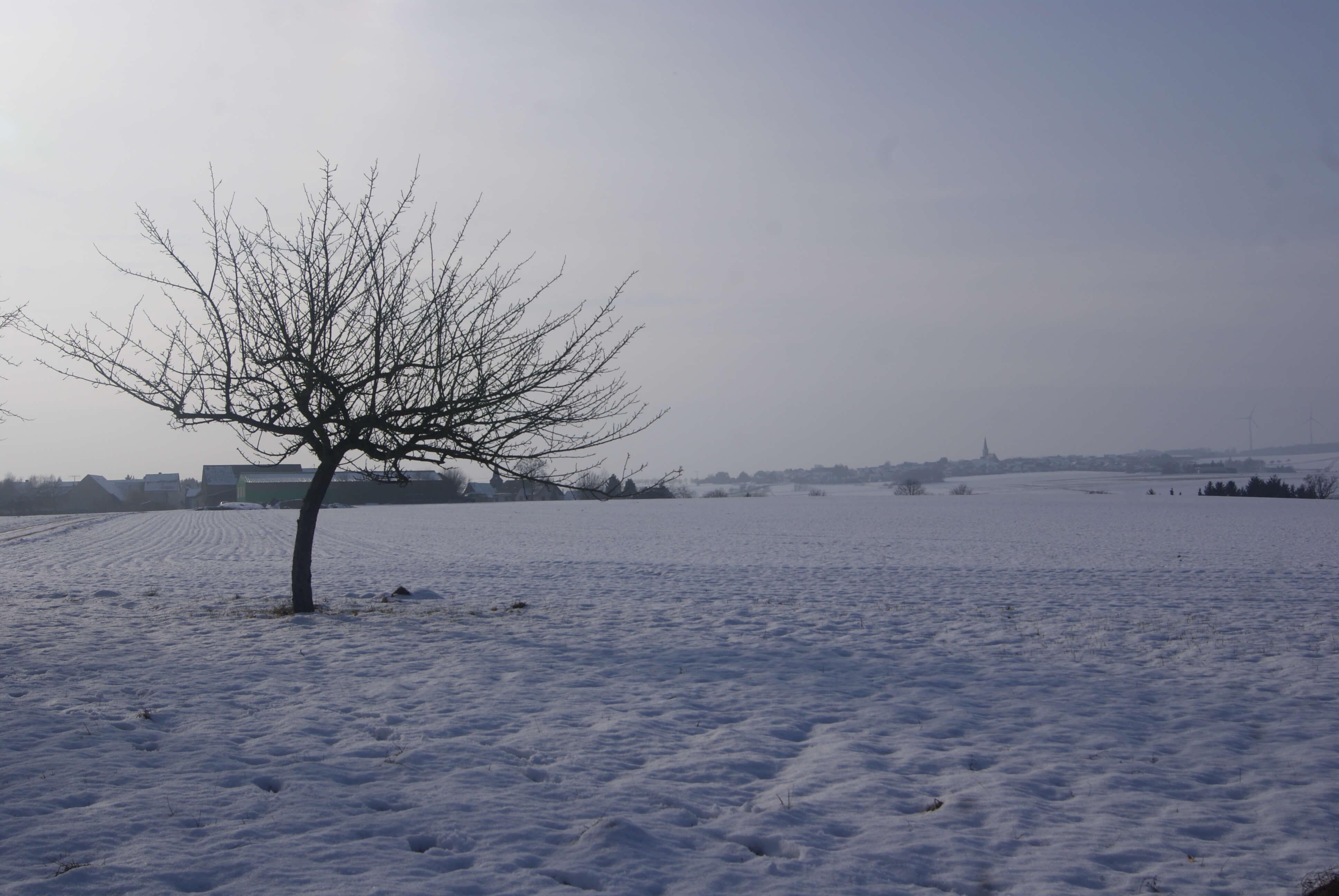 feria alemania en febrero