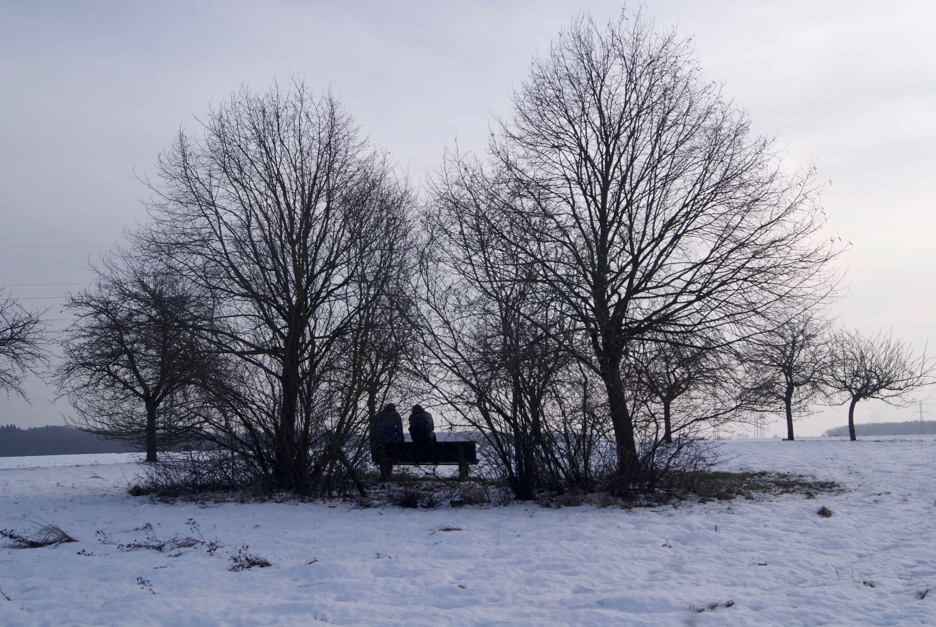 temperatura en febrero en alemania